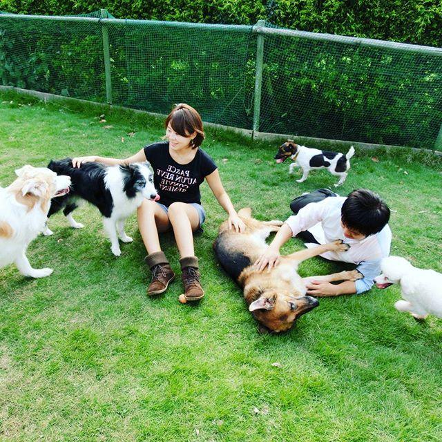 犬と楽しく暮らすための「犬の飼い方しつけ方」