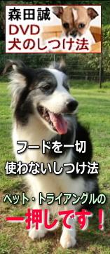 森田誠のDVD 犬のしつけ法