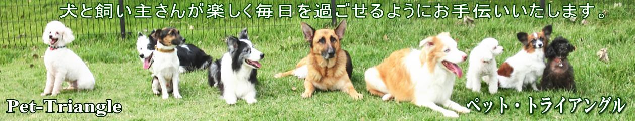 ペット・トライアングル 犬と楽しく暮らす飼い方・しつけ方