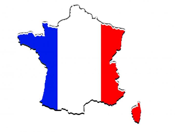 フランスの人気犬種トップ10