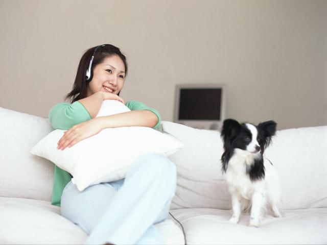 犬の飼い方・しつけ方、最新情報が正しいとは限らない
