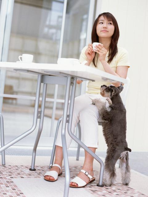 犬の問題行動ー飼い主はそう思わなくても問題な場合も