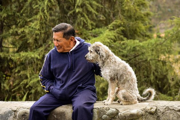 高齢者にこそ、犬が必要ではないのだろうか?