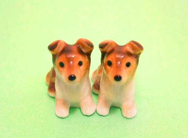 愛犬のクローン犬、これって・・・