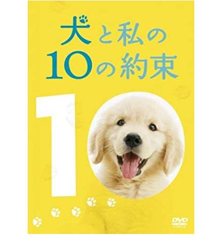 犬との10の約束 6番目