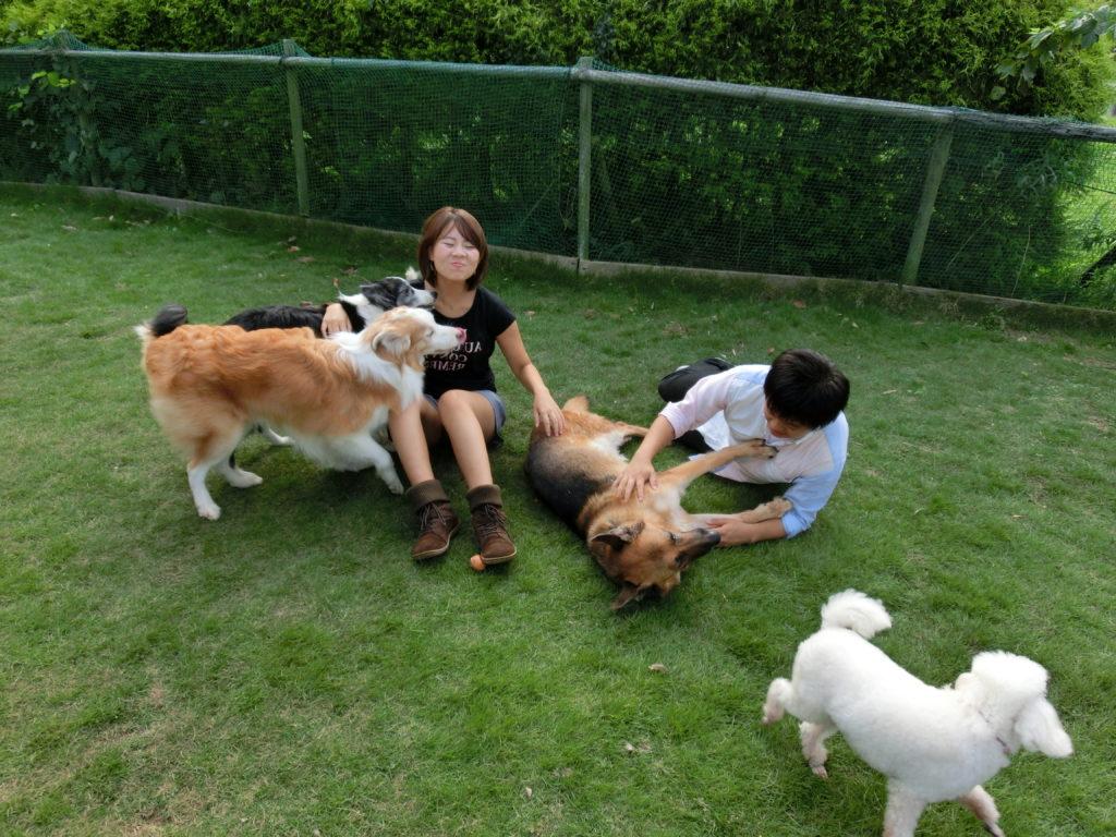 犬と楽しく暮らそう!
